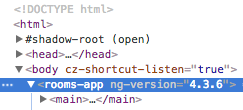 Angular 4 version attribute on webpage
